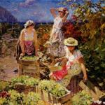 Контроль сбора и доставки винограда